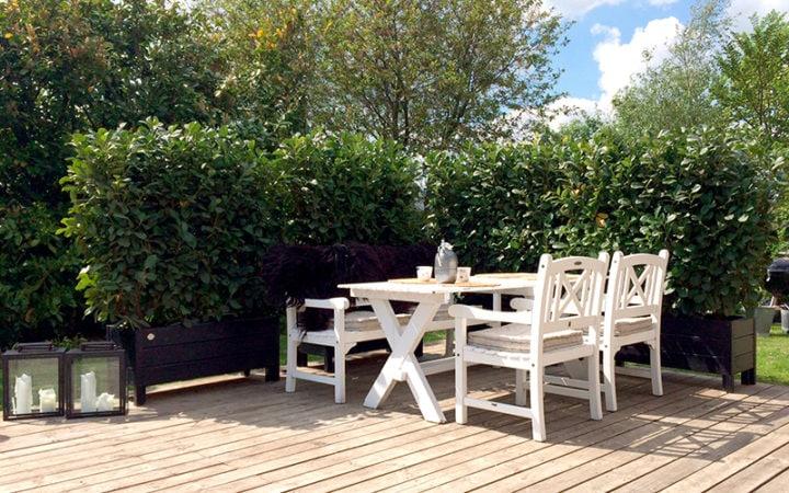 mobil hæk terrasse